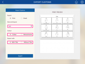 Image of the Export Customs page with size, colour and title customisations highlighted
