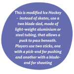 What is Para Ice-Hockey